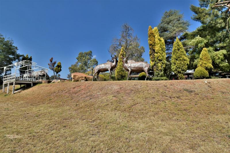 Property For Sale in Eikenhof, Johannesburg 25