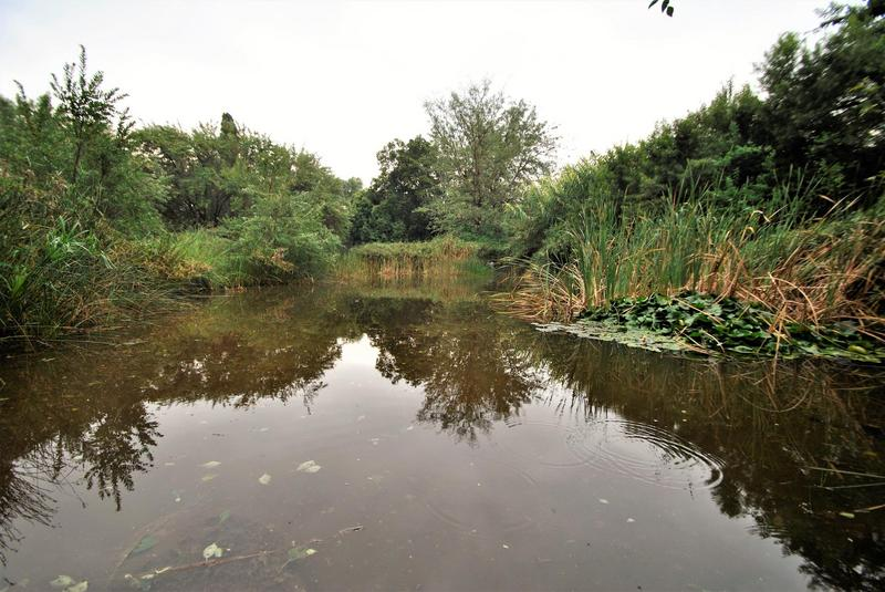 Property For Sale in Dinwiddie, Germiston 42
